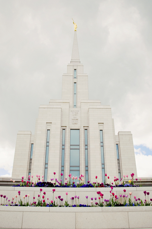 Miracle from the Temple